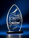 Pinnacle Satin Wired Clear Acrylic Award Acrylic and Metal Awards