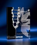 Rectangle Crevice Acrylic Award Modern Design Awards