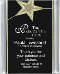 Black/Gold Star Acrylic Award Recognition Plaque Star Awards