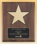 Walnut Stained Piano Finish Plaque with 8 Gold Star Star Cast Awards